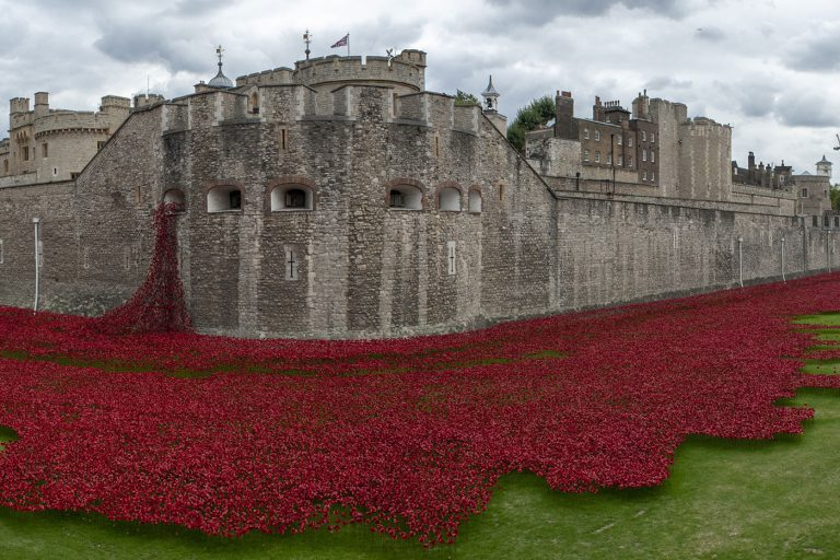 Visiting the Tower of London Poppies