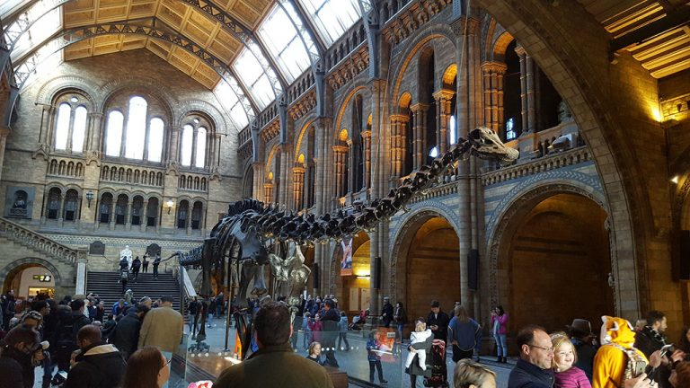 Dippy the diplodocus is leaving the Natural History Museum
